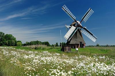 Foto Langelandster molen.jpg
