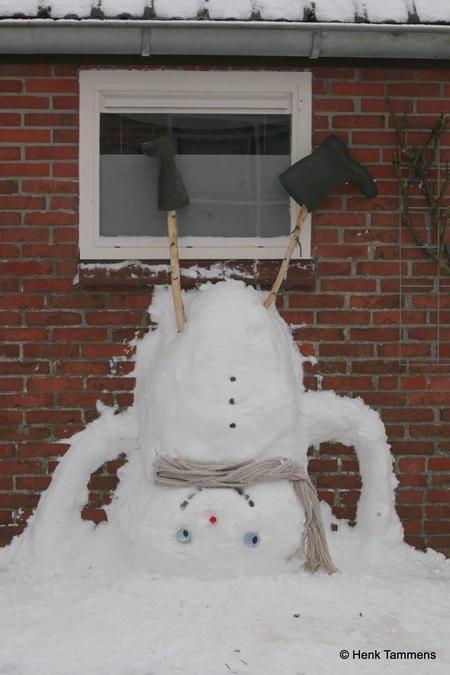 sneeuwthesinge.jpg