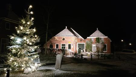 kerstboom2017.jpg