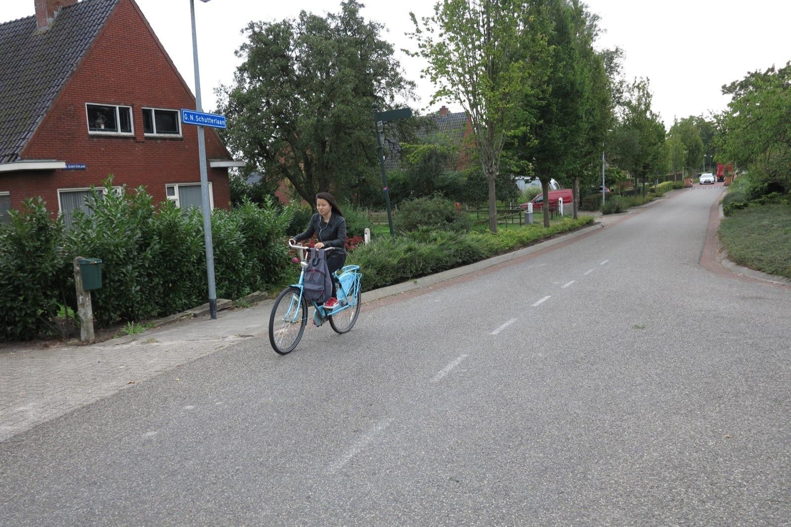 et-fiets-en-fietser-86-fu-mei---luddestraat-oi.jpg