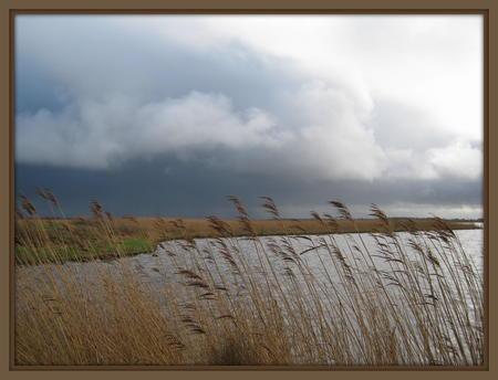 Lauwersmeer 006.JPG